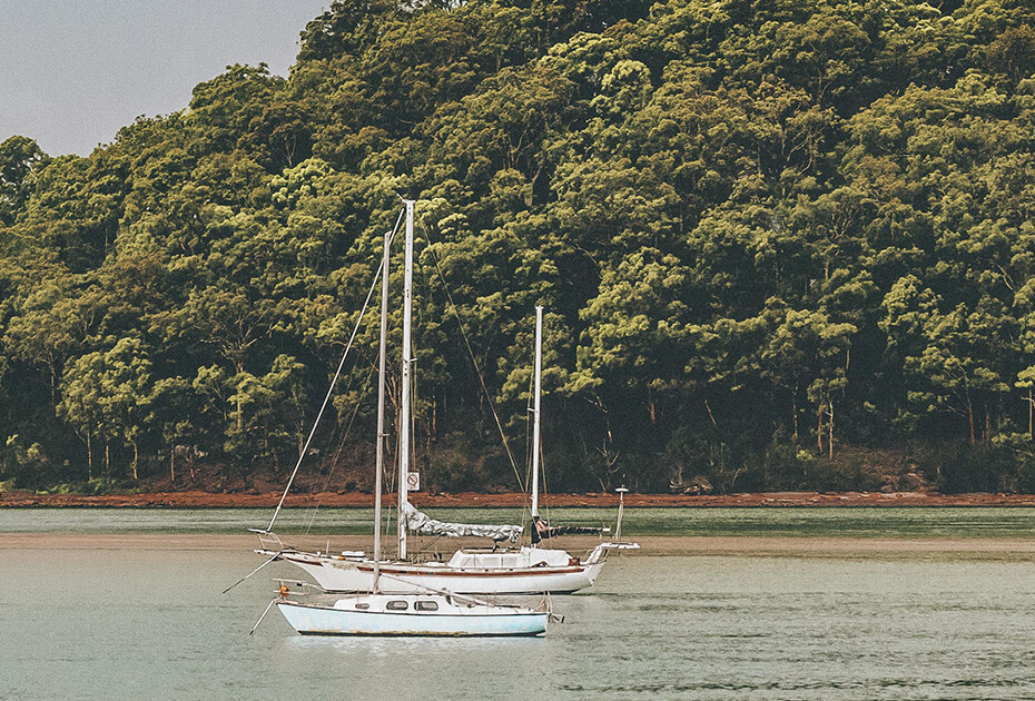 Two boats on the sea with a green forest behind