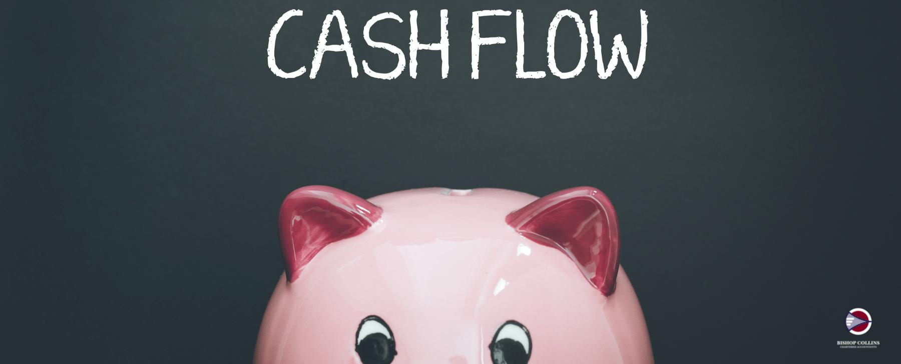 cashflow pig