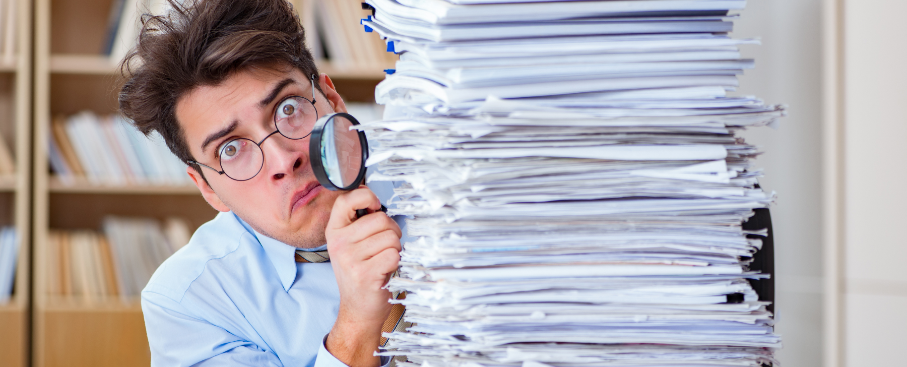 what do auditors do in a financial report audit